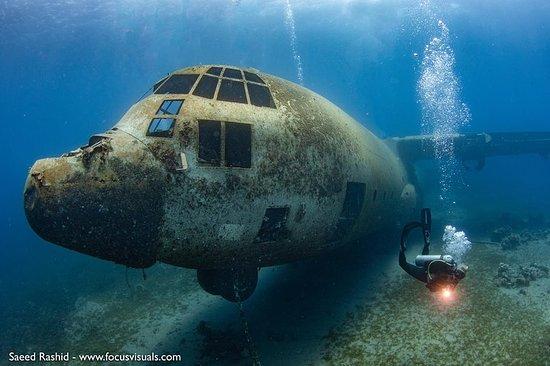 Plongée sous-marine pour plongeurs...