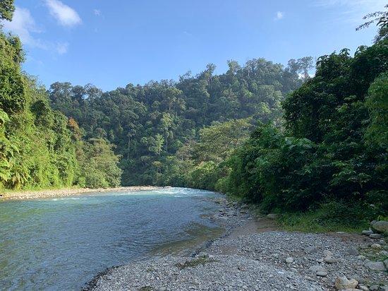 2 Day ECO Jungle Trek into the Gunung Leuser National Park: Abschließend Rafting