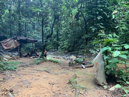 2 Day ECO Jungle Trek into the Gunung Leuser National Park: Das Camp