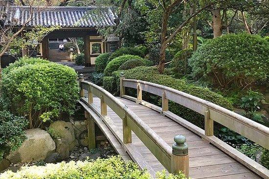 PrivateTour - Besøk en annen verden i byen og føl japanske sjeler!