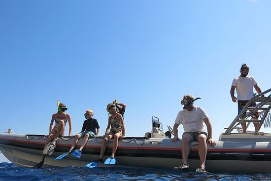 私人遊輪前往Sounio海角的Poseidon寺,浮潛和游泳