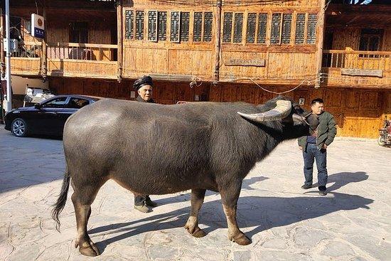 Visite privée de 9 jours: de Guilin...