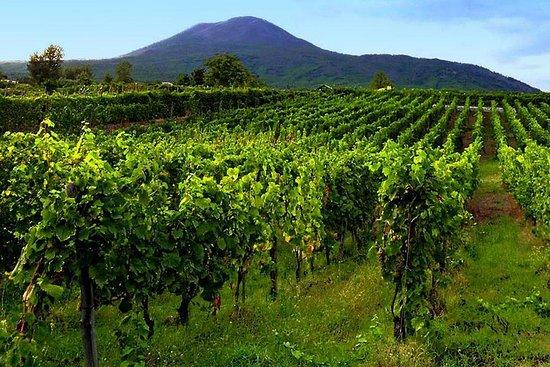 Pompei-herculaneum & wijnproeverij