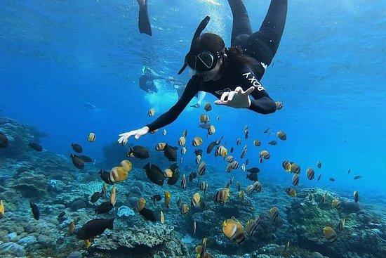 Eines Tages Nusa Penida Island West...