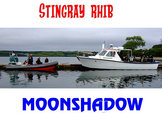 Falmouth, UK: Stingray RHIB and Moonshadow Hard Boat