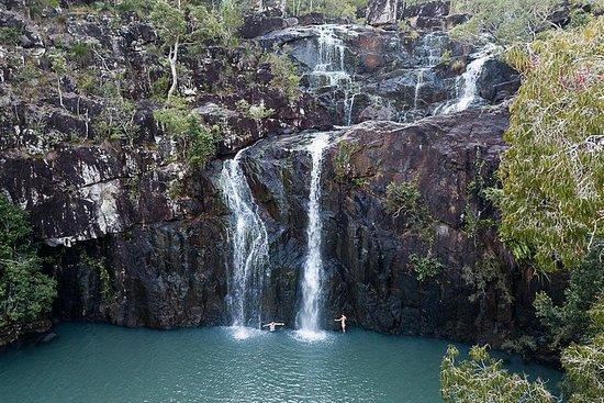 Tropical Rainforest & Waterfalls...