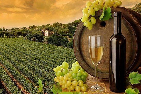 Visite privée d'une journée de dégustation de vin Niagara-on-the-Lake...