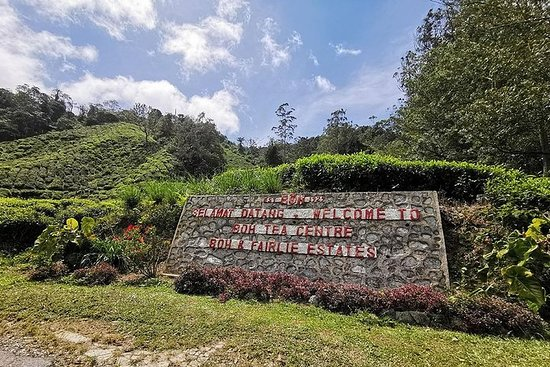 Cameron Highlands And Lata Iskandar...