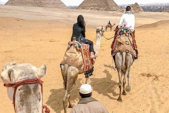 Tur til pyramidene og egyptiske museet