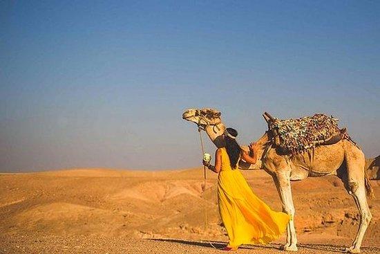 Excursión de un día al desierto de...