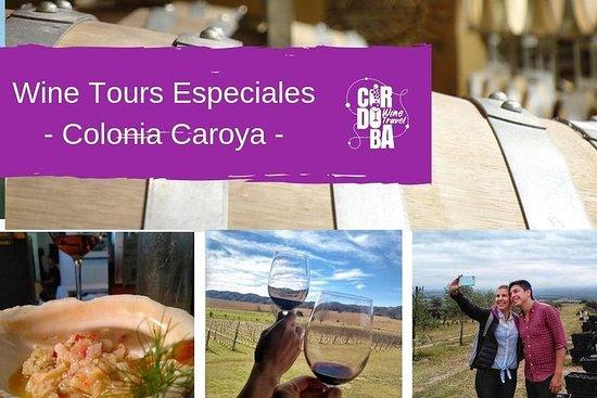 Tour privado del vino - Colonia Caroya
