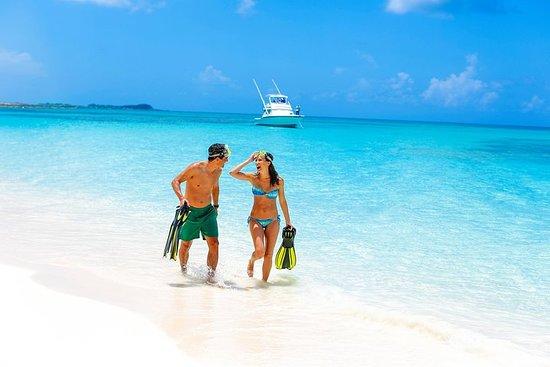 Dagtour per boot naar Rose Island ...