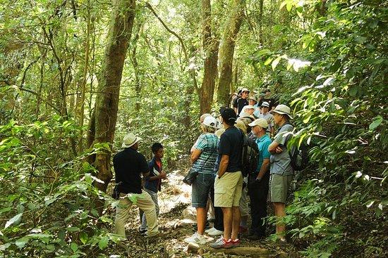 Combo Tour: Volcanoes, Lake and Mayan sites including Joya de Ceren