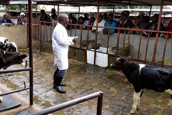 Agroturisme og dyreliv