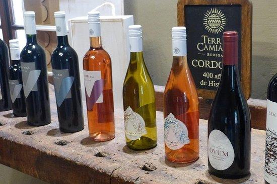 Private Wine Tour Colonia Caroya Córdoba, Argentina
