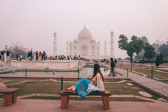 Amazing Taj Mahal Tour de Delhi