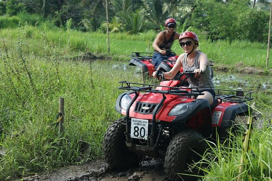 Bali Quad Bike and Bali Best Waterfalls...