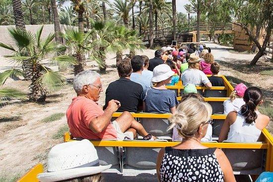Rio Safari Elche med transport fra Benidorm