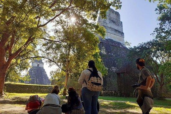 Tikal Day Tour from Guatemala City...