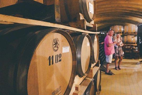 米蘭巴羅洛葡萄酒之旅