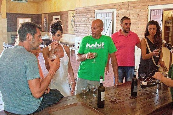 凱法利尼亞葡萄酒之旅