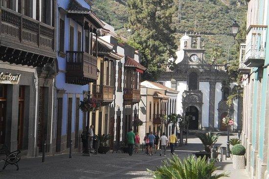 Heldagstur fra Las Palmas til høydepunktene nord på Gran Canaria