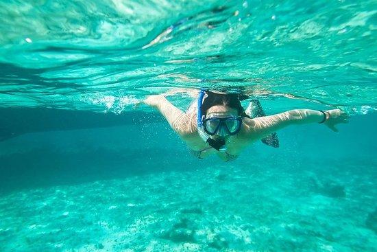 Cades Reef Snorkel Cruise