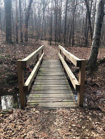 Bridge on the North Lakes Trail Connector. Hiking/biking trail.