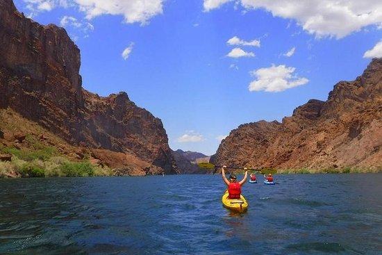 Excursión de un día en kayak por el río...