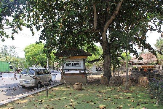 Excursão Terrestre Bali Excursão Real...