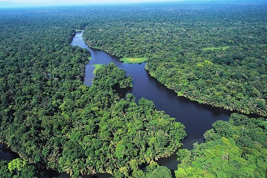Tortuguero National Park One Day Trip