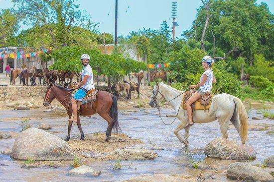 Excursão combinada de Puerto...