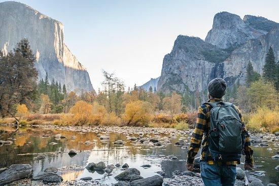 Yosemite National Park heldagstur fra...