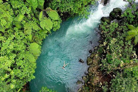 Selva tropical 4 en 1, río azul, baño...