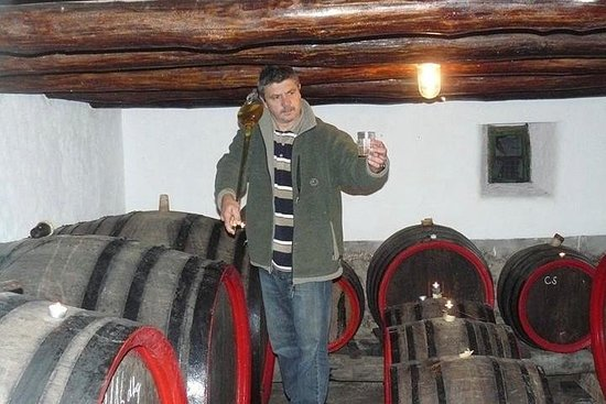 Degustazione di vini privati nella campagna vicino a Budapest