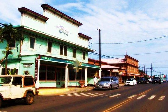 Discover Kamehameha's Birthplace & Plantation Village Tour (Kona, HI...