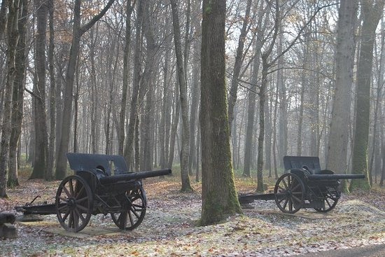 Private WWI Day Trip from Paris: Aisne-Marne Battlefields, Belleau...