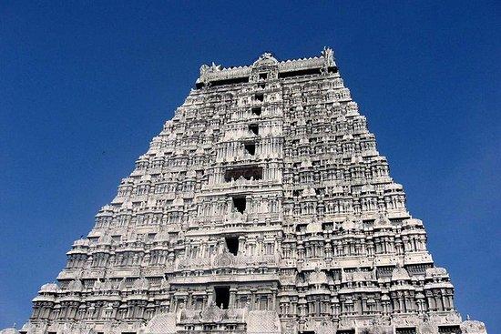 Gita di un giorno al Tempio di Tiruvannamalai e Sri Ramana Ashram da