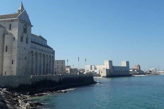VIP privé-dagtrip van Napels naar Matera