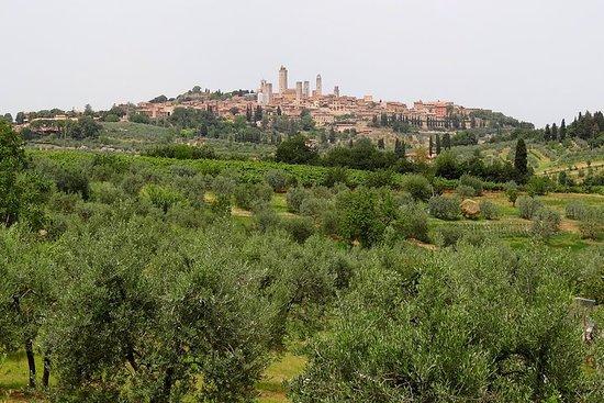Privat VIP Exclusive Tour til Siena...