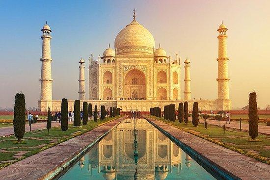 从德里出发:泰姬陵日出之旅,返回旧德里徒步之旅