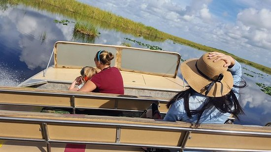 Full-Day Everglades Naturalist-Led...