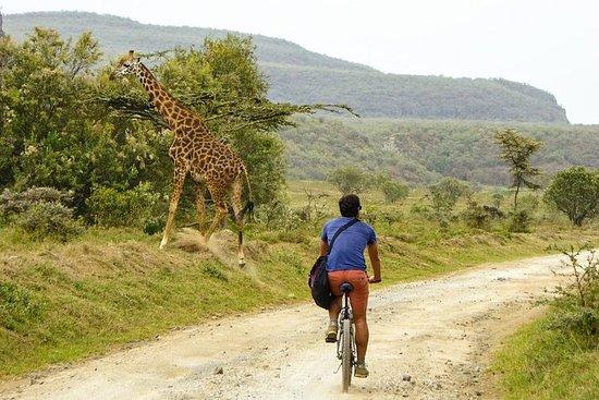 Tour di un giorno a Nairobi e Safari a