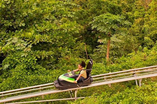 Montego Bay to Mystic Mountain Bobsled...