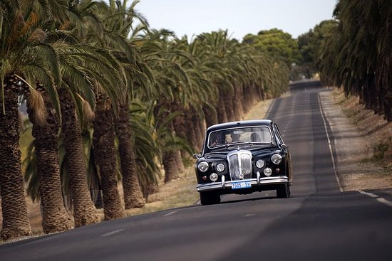 Visite Privée du Barossa Valley Winery Classique 1962 Daimler de la...