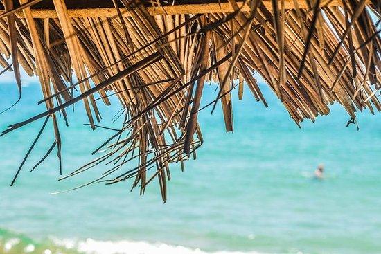 Visite privée sur mesure de la Martinique