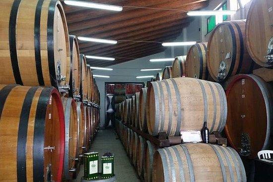 Etna & wijnreis