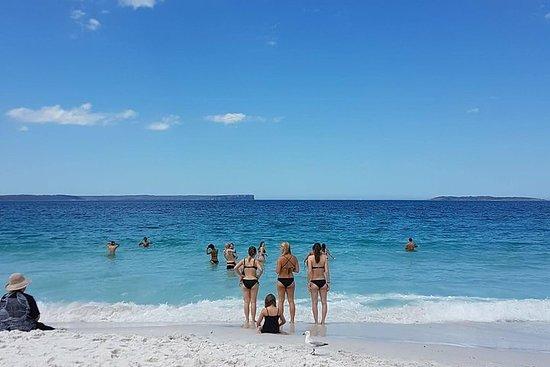 Excursión de un día a Jervis Beach...