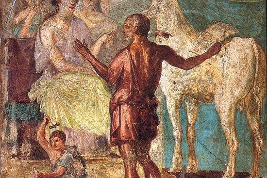 Pompeii Express Prestige: visita