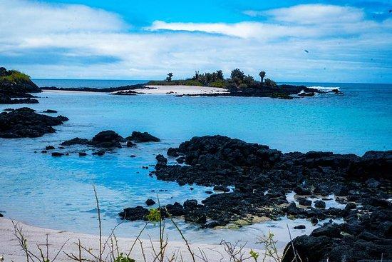 Isla Floreana - Day Tour - From Santa...